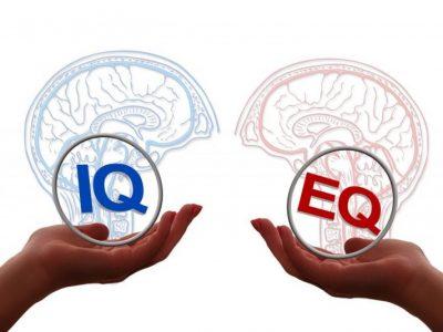 Emotionel Intelligens